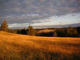 01_morning_custer_state_park_south_dakota.jpg